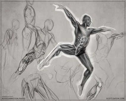 anatomy drawing by Scott Eaton, reference images from Bodies in Motion - Male Ballet.