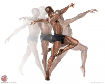 Male Ballet motion sequence, with ecorche