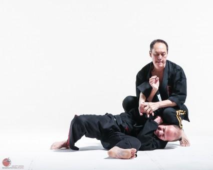jujitsu submission