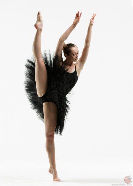 ballet développé bodies in motion, scott eaton