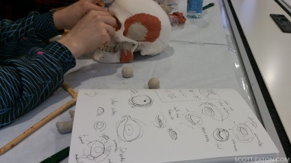 eye placement and antomy at Scott Eaton's facial anatomy course at Creative Assembly
