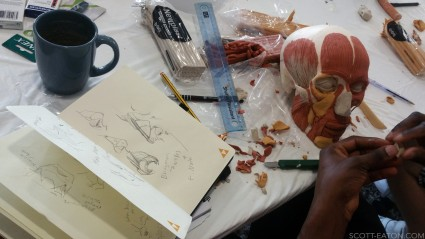 Nose cartilage reconstruction, Scott Eaton's facial anatomy workshop at Creative Assembly