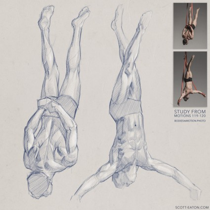 Form and anatomy study from Circus artist at Bodies in Motion