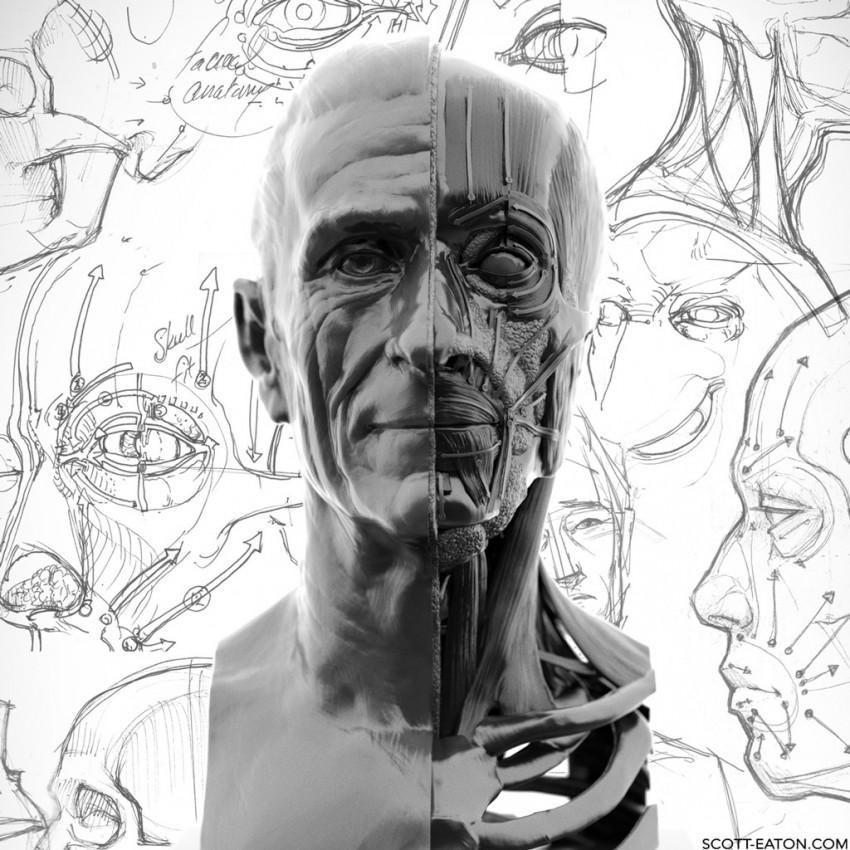 Scott Eaton's Portraiture & Facial Anatomy online course