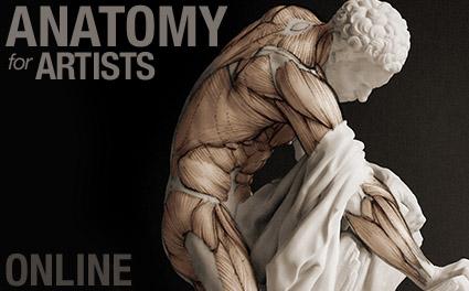 anatomy course homepage