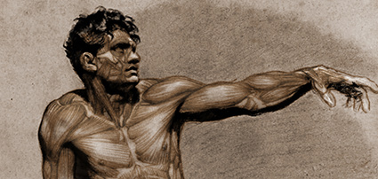 anatomy course exercise