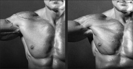 artistic anatomy course week 2 - chest, shoulders, abdoment