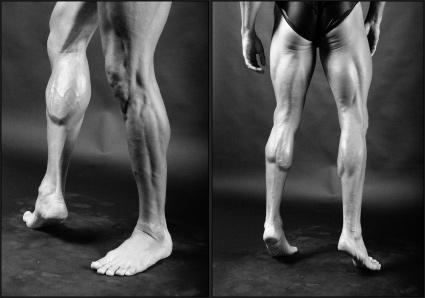 artistic anatomy course week 5: Pelvis, Upper and Lower Legs