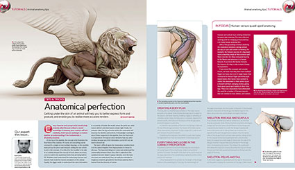 Animal Anatomy tutorial