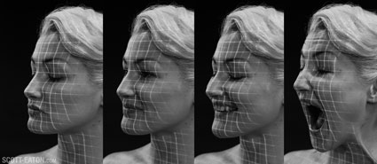 facial expressions contours