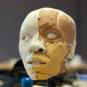 the final facial reconstruction