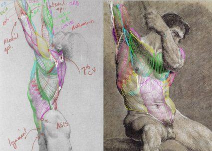 In class ecorche studies - Scott Eaton's Essential Anatomy